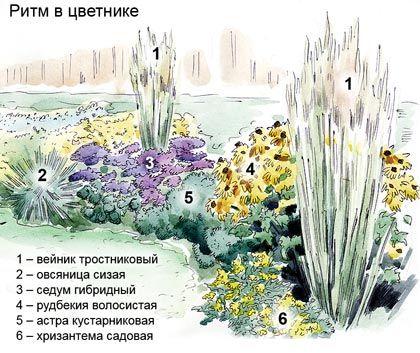 В Словаре терминов ландшафтной